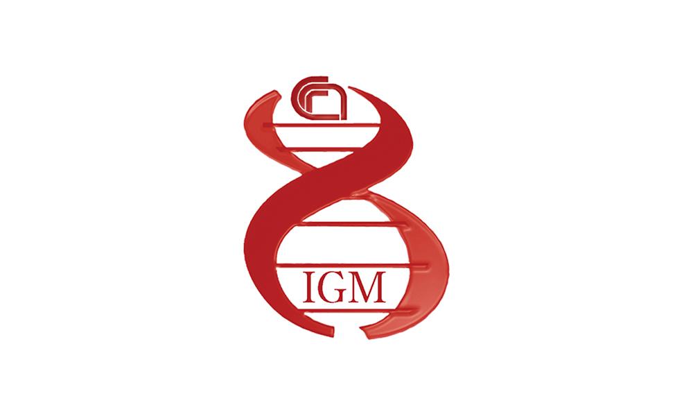 IGM – CNR